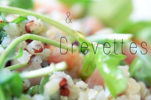 Recette: salade rapide et saine!