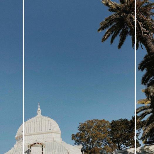 Le parc du Golden Gate à San francisco