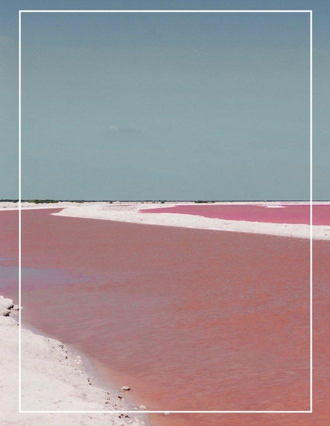 Rio Lagartos et Los Coloradas